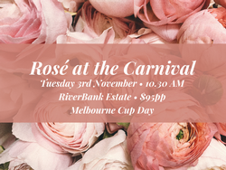 Rosé at the Carnival Ticket 2020